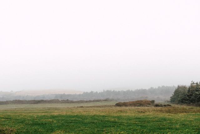 rubjerg9